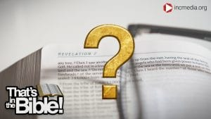 image of a bible with a gold question mark