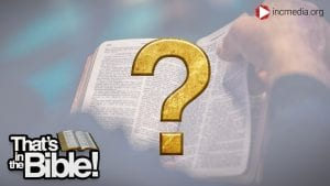 person flipping through a Bible with a gold question mark