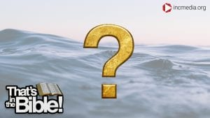 open water with a gold question mark